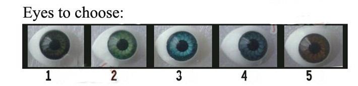 Eyes (Цвет глаз)_5