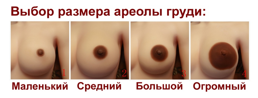 hit-areola-size-rus
