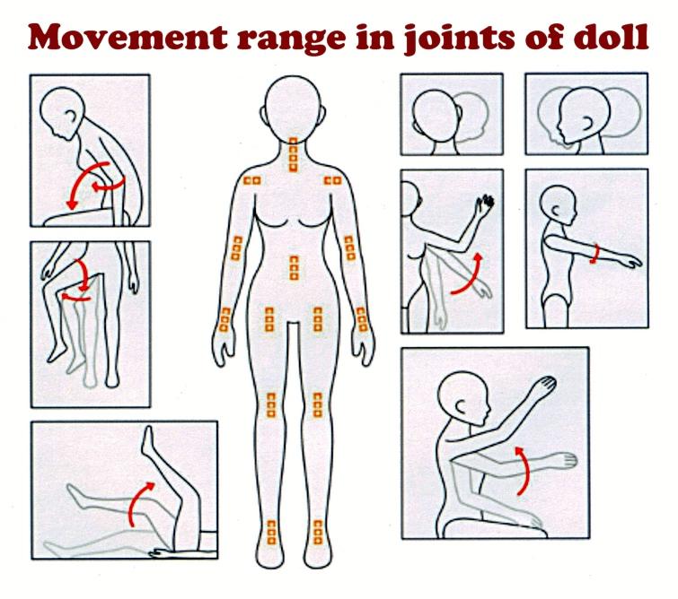 movement-range
