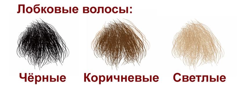 D4E Pubic hairs (rus)