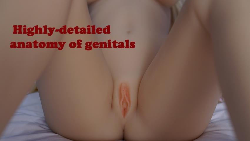 D4E Realistic vagina (eng)