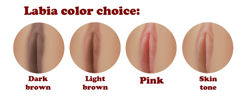 D4E Labia color (eng)