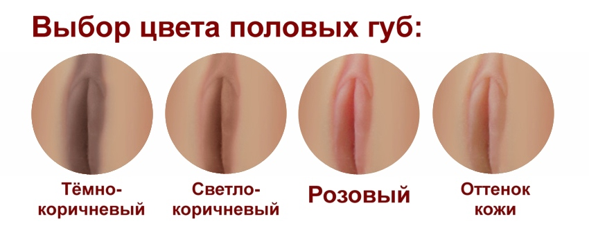 D4E Labia color (rus)