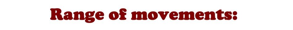 DS range of movements EN