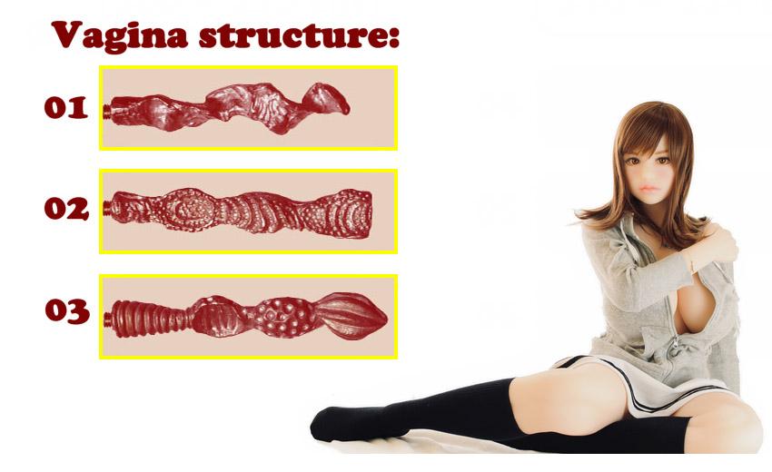 DH168 vagina structure 116-134cm EN