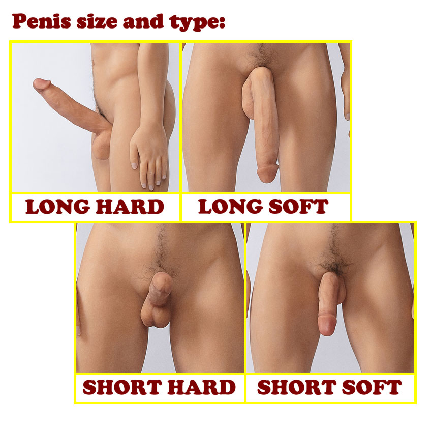 IT penis size and type (eng)
