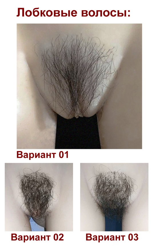 Robot series - pubic hairs option RU