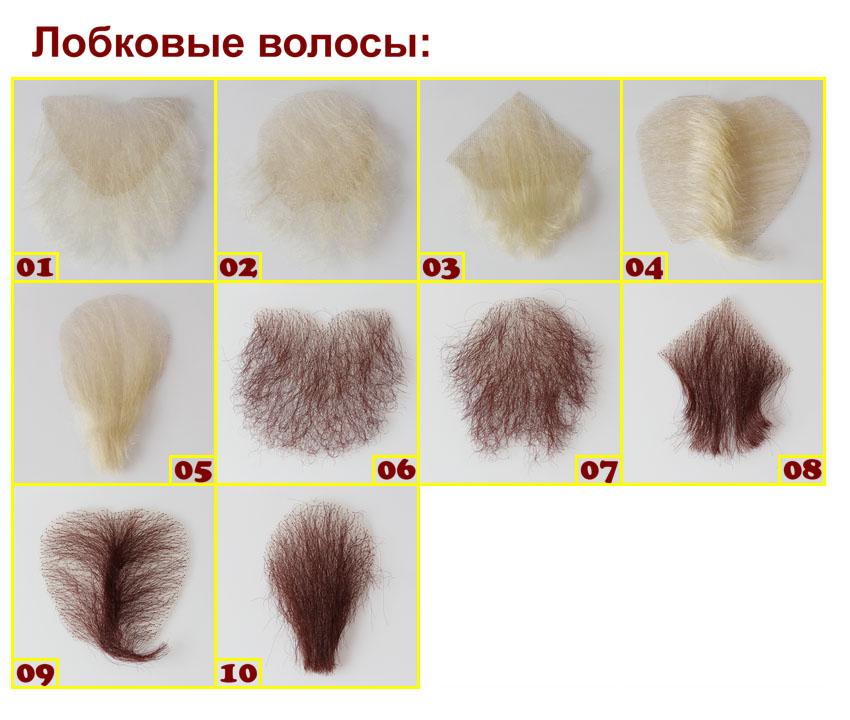 D4E DH168 Piper Pubic hairs (rus)