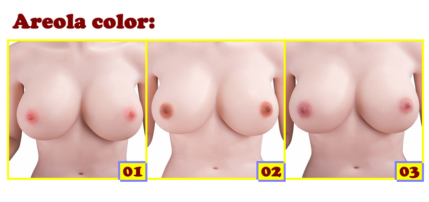Sino Areola color EN