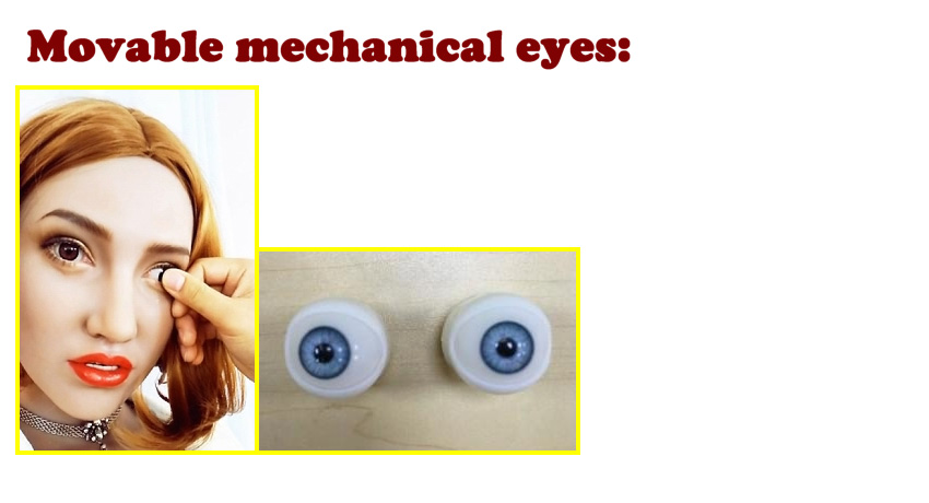 Sino Movable eyes EN