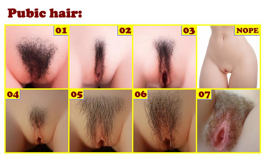 Sino Pubic hair EN