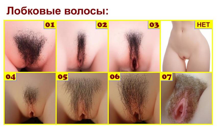Sino Pubic hair RU