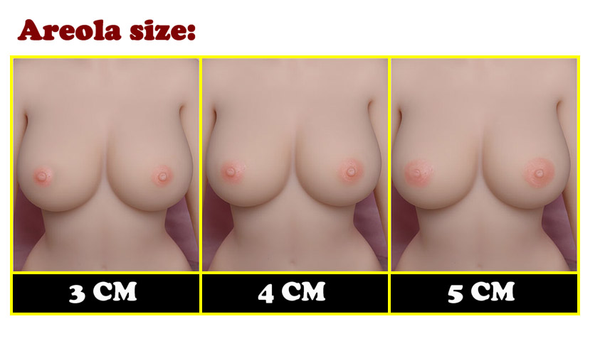 YL areola size EN
