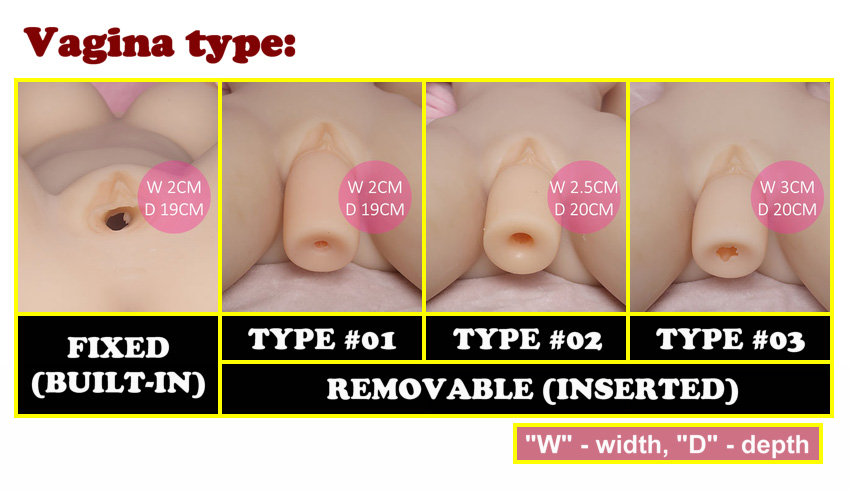 YL vagina type EN