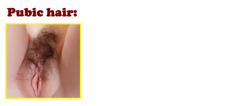 Gynoid pubic hair option EN